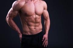 Cuerpo muscular del hombre joven que presenta sobre gris Fotos de archivo