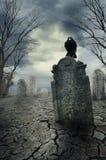 Cuervo en la piedra sepulcral Fotografía de archivo