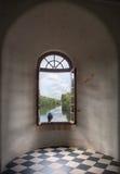 Cuervo en una ventana Imágenes de archivo libres de regalías