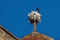 Cuervo encima de la casa Fotografía de archivo