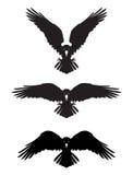 Cuervo heráldico malvado oscuro con las alas separadas libre illustration
