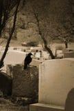 Cuervo que se coloca en sepulcro fotos de archivo libres de regalías