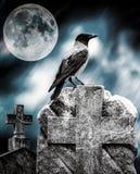 Cuervo que se sienta en una lápida mortuaria en claro de luna en el cementerio Imagen de archivo