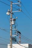 Cuervos en los alambres eléctricos contra el cielo azul Imagen de archivo