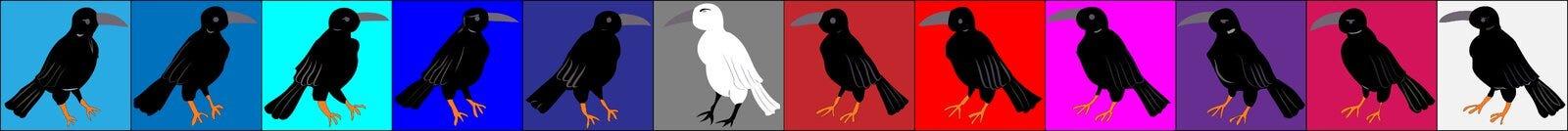 Cuervos y cuervos, ordenanza organizada en cuadrados coloreados fila Imagen de archivo