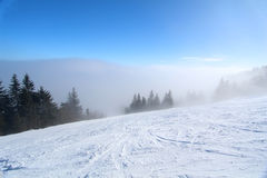 Cuesta brumosa de la nieve con los árboles Fotografía de archivo