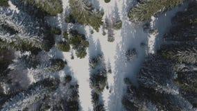 Cuesta de la Givrine 1228 m Es un paso de alta montaña en Jura Mountains en el cantón de Vaud en Suiza almacen de video