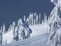 Cuesta del esquí con las pistas frescas Foto de archivo libre de regalías