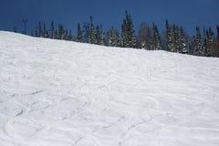 Cuesta del esquí en el bosque de la nieve en día de invierno asoleado Imagen de archivo