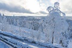 Cuesta del esquí en estación de esquí sueca Fotografía de archivo libre de regalías