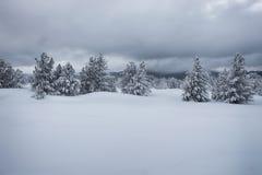 Cuestas de montaña en invierno fotografía de archivo libre de regalías