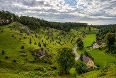 Cuestas del enebro en el valle de Kleinziegenfeld en Alemania Foto de archivo libre de regalías