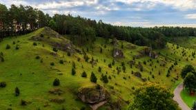 Cuestas del enebro en el valle de Kleinziegenfeld en Alemania Imágenes de archivo libres de regalías