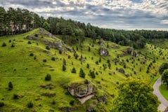 Cuestas del enebro en el valle de Kleinziegenfeld en Alemania Foto de archivo