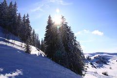 Cuestas del esquí Foto de archivo libre de regalías