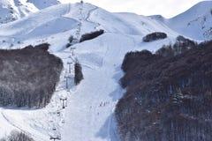 Cuestas y esquiadores del esquí fotos de archivo