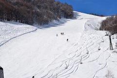 Cuestas y esquiadores del esquí foto de archivo
