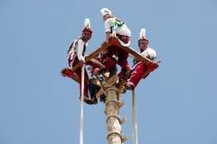 CUETZALAN, MEXICO - 2012: Een familie van acrobaten als ` los voladores ` worden bekend presteert in Cuetzalan-zocalo die Royalty-vrije Stock Foto's