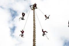 CUETZALAN MEXICO - 2012: En familj av akrobater som är bekanta som ` för `-los-voladores, utför i den Cuetzalan zocaloen royaltyfri bild