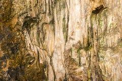 Cueva de Dripstone Fotografía de archivo libre de regalías