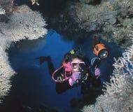 Cueva de encargo, Solomons Foto de archivo libre de regalías