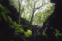 Cueva de Gruta das Torres Foto de archivo libre de regalías