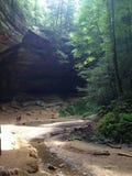 Cueva de la foto de la naturaleza con verdor Imagenes de archivo