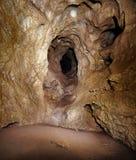 Cueva de la yegua de Coiba en Rumania Foto de archivo libre de regalías