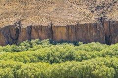 Cueva de Las Manos, Patagonia, Argentinien Stockfotografie