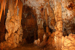Cueva Del Viento - il Porto Rico Immagine Stock