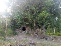 cueva en los árboles imagen de archivo