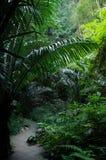Cueva en Tailandia Imagenes de archivo