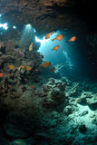 Cueva subacuática y luz del sol Foto de archivo