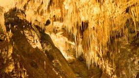 Cueva Tasmania de Hastings Fotografía de archivo
