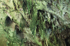 Cuevas de la estalagmita Fotografía de archivo