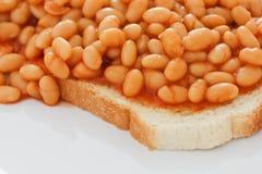 Cueza al horno las habas en la tostada blanca Imagen de archivo