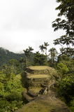 Cuidad Perdida. This is the view from the top terrace overlooking Ciudad Perdida (The Lost City) in Colombia.  It takes a 6-day hike through the jungle to arrive Stock Photos