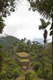 Cuidad Perdida. This is the view from the top terrace overlooking Ciudad Perdida (The Lost City) in Colombia.  It takes a 6-day hike through the jungle to arrive Royalty Free Stock Photography