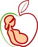 Cuidado da gravidez ilustração royalty free