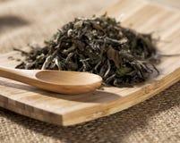 Cuidado da natureza com chá verde Imagens de Stock