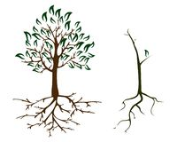 cuidado de la ecología del otoño de 2 árboles libre illustration