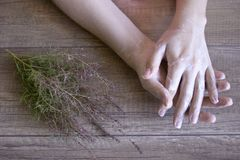 Cuidado de la mano, cuidado popular de la mano Manicura Procedimiento del balneario para las manos de la belleza Belleza y concep imagen de archivo