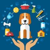 Cuidado del perro infographic libre illustration