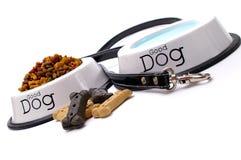 Cuidado do cão Fotografia de Stock