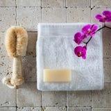Cuidado do corpo com escova da bucha, sabão da glicerina, toalha branca do algodão Imagens de Stock Royalty Free