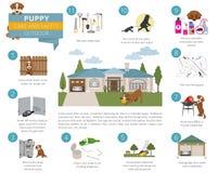 Cuidado e segurança do cachorrinho em sua casa outdoor Treinamento do cão de estimação dentro ilustração stock