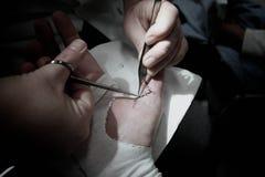 Cuidado médico foto de archivo libre de regalías