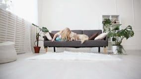 Cuidado para los animales domésticos Una muchacha del blonde frota ligeramente su perro con amor en la sala de estar golden retri metrajes