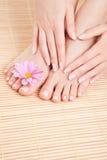 Cuidado para os pés da mulher Imagem de Stock
