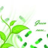 Cuidado verde Imagen de archivo libre de regalías